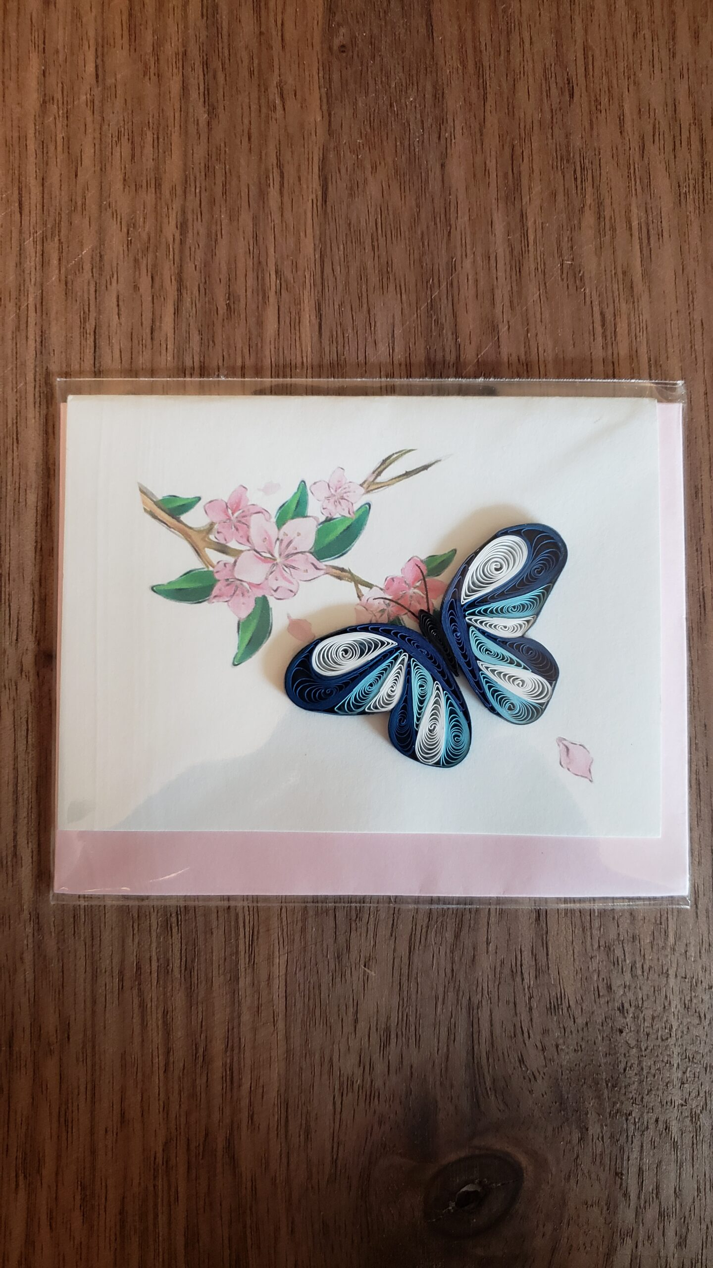 Blue Butterfly Gift Enclosure