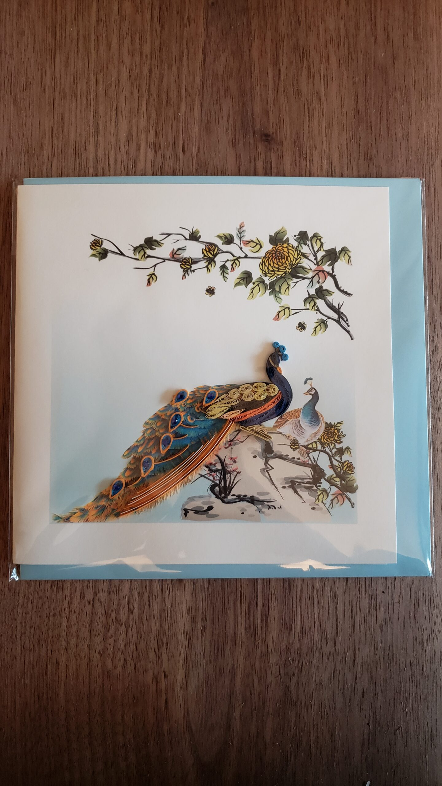 Peacock Card 6 in. x 6 in.