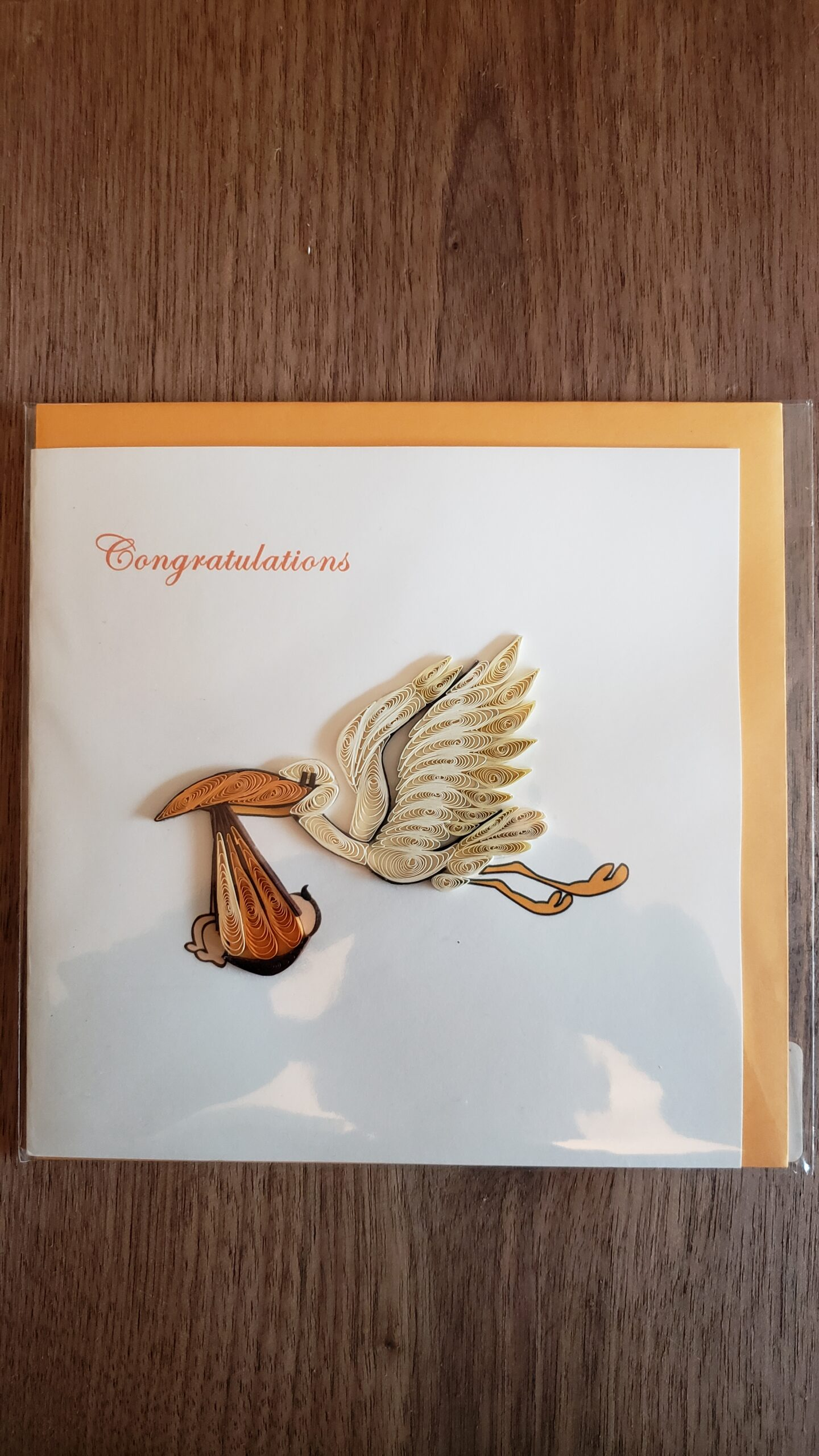 Stork Delivery Card 6 in. x 6 in.